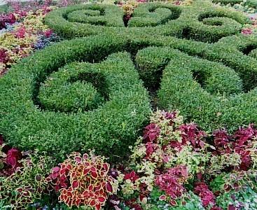 나비모양 정원