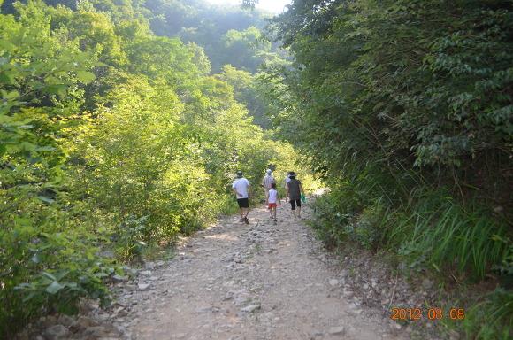 산길을 걷는 가족의 뒷모습