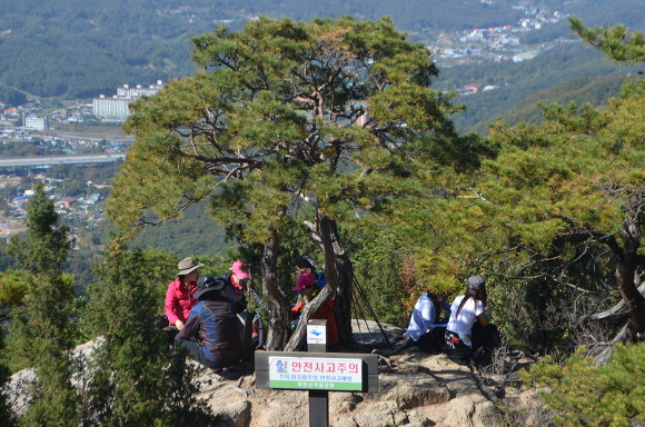 나무 아래서 쉬고있는 등산객들