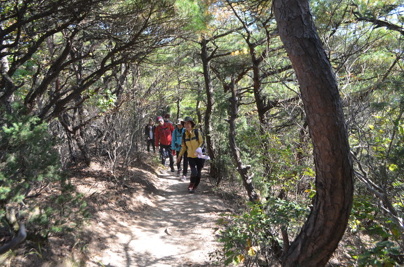 오솔길을 따라 걷는 등산객들