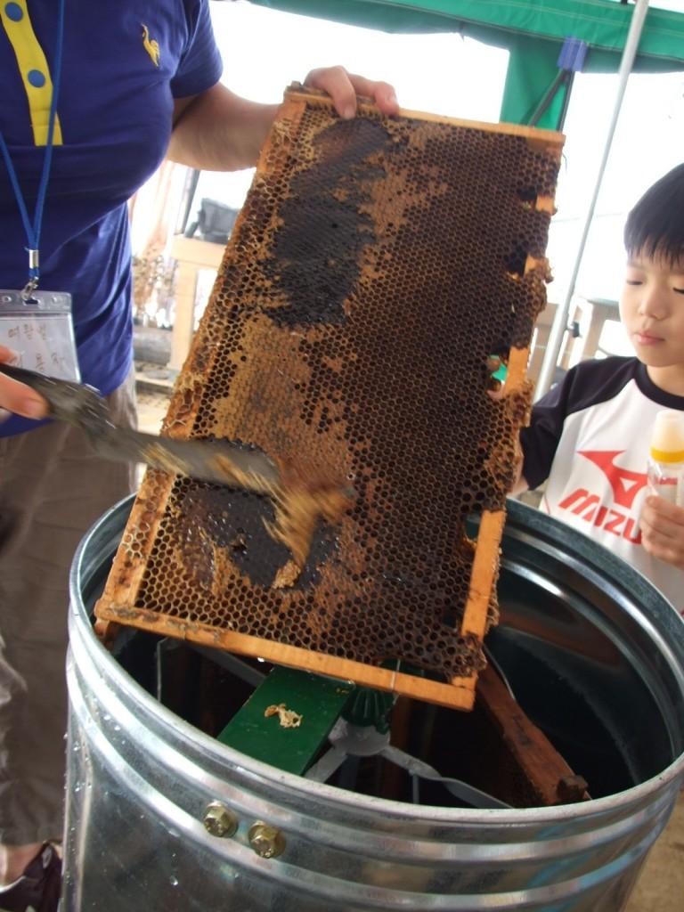 나무틀에 꿀이 덕지덕지 붙어 있는 모습