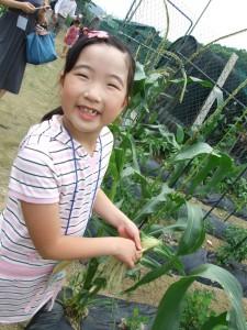 옥수수밭에서 사진을 찍고 있는 아이의 모습