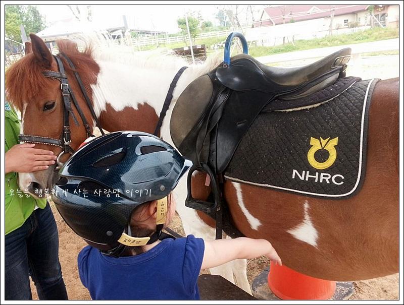 말과 아이