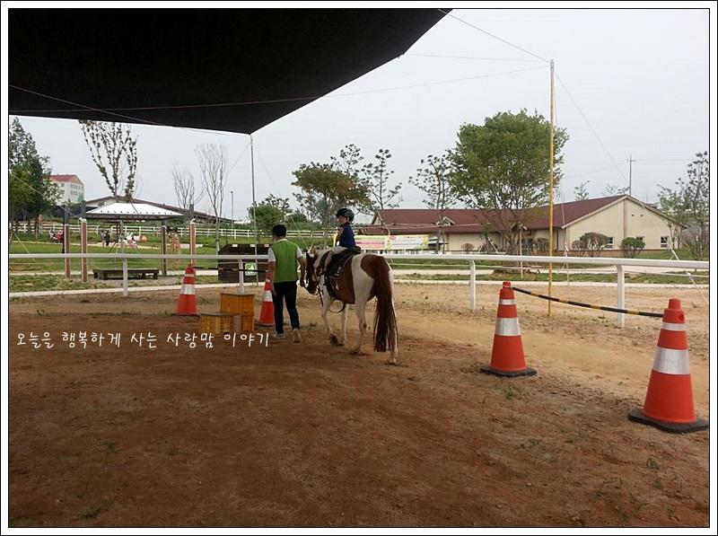 말을 타고 멀리까지 간 아이의 모습