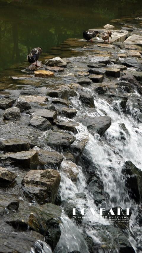 바위 틈 사이로 흘러내리는 강줄기의 모습