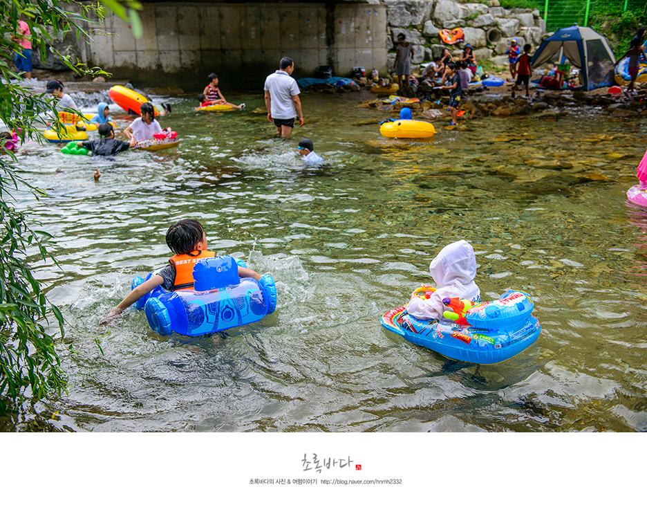 귀여운 모양의 튜브를 타고 물놀이 하는 아이들의 모습