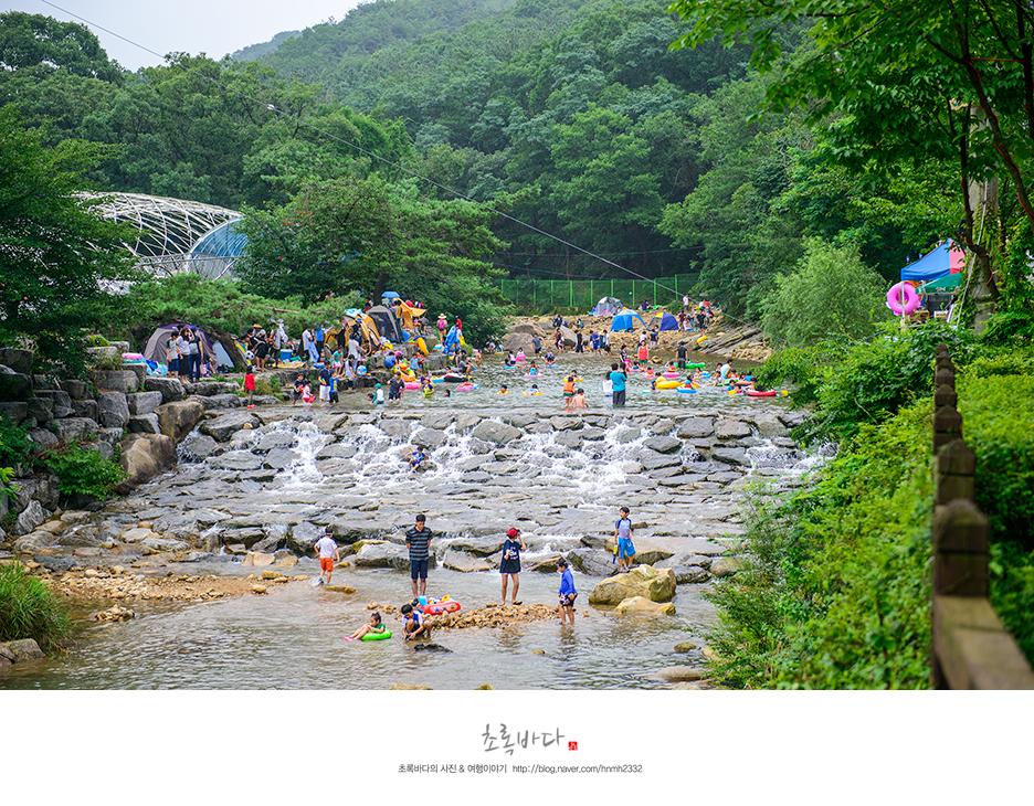 더 많은 사람들이 모여 있는 하천의 모습