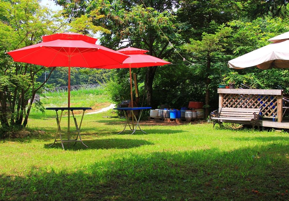 붉은 파라솔이 있는 정원의 모습