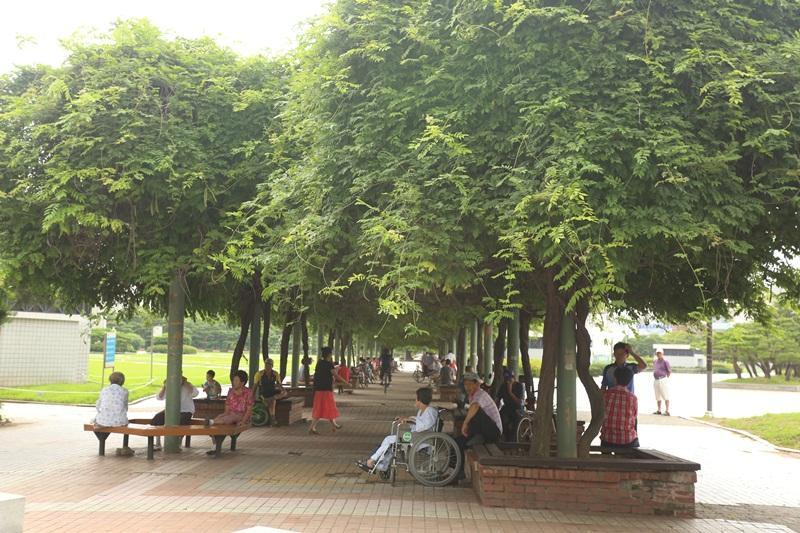 나무잎으로 둘러싸여 만들어진 그늘의자에서 휴식을 취하고 있는 사람들의 모습