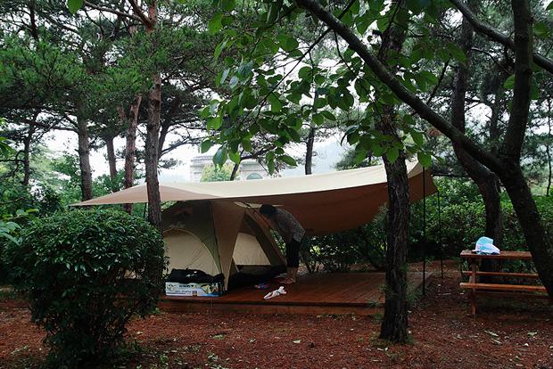 나무 사이의 텐트모습
