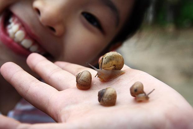 손에서 꼬물거리는 달팽이들