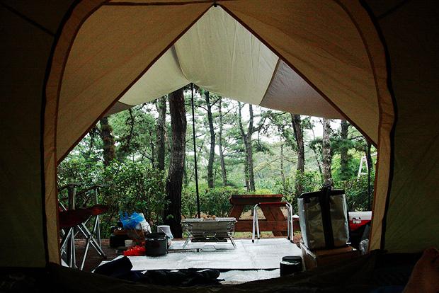 텐트 안에서 본 바깥풍경