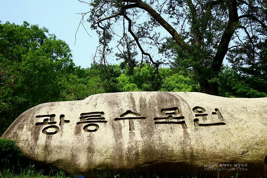 광릉수목원이라고 적힌 커다란 돌