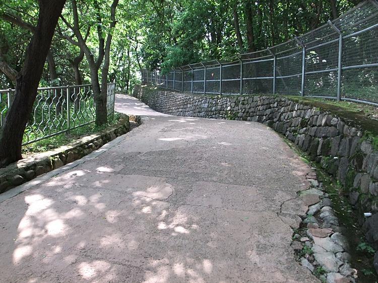 경순왕릉으로 올라가는 산책로