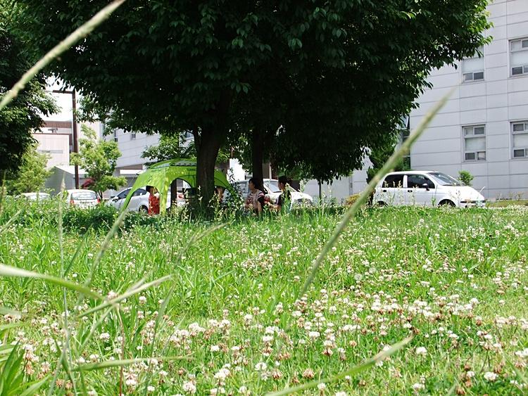 습지 옆의 나무 그늘에서 쉬고 있는 사람들의 모습