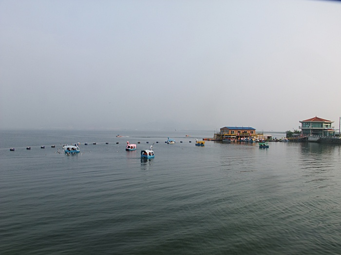 호수에 떠 있는 오리배의 모습