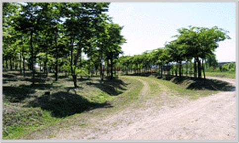 하남 나무고아원1