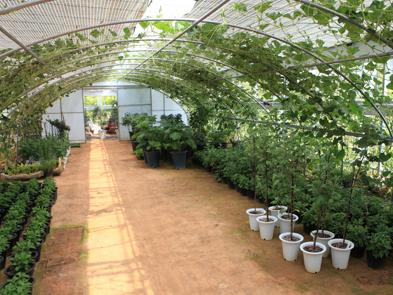 화성 우리꽃식물원1