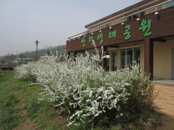 안터생태공원