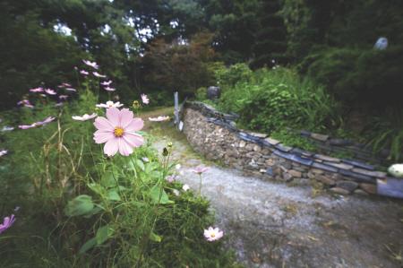 율봄식물원2