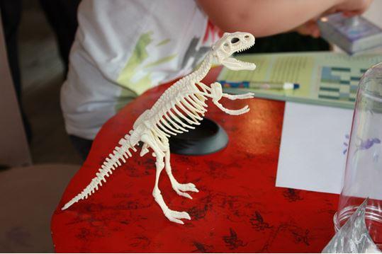 오남공룡체험전시관2