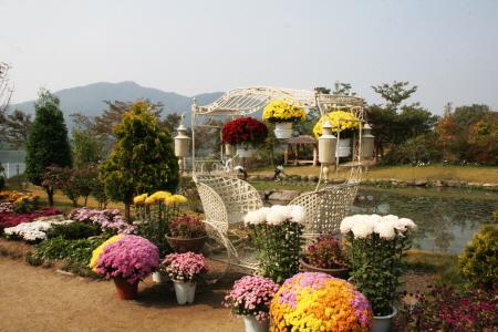 들꽃수목원3