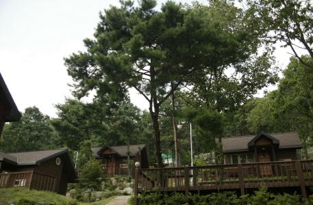 용문산자연휴양림