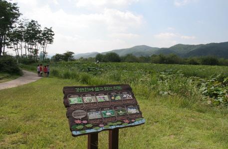 경안천습지생태공원