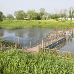 출판단지 생태공원