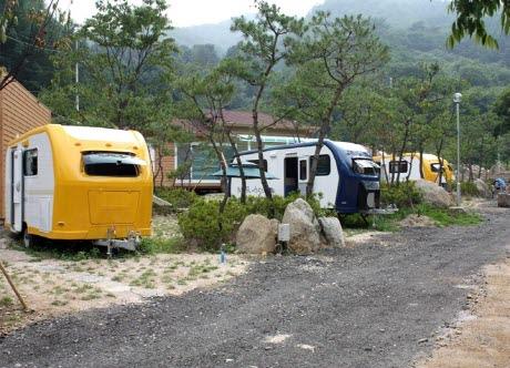 장흥수목원 캠핑장1
