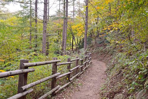 중미산자연휴양림3