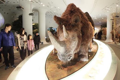 700만 년 전으로의 역사여행 전곡선사박물관