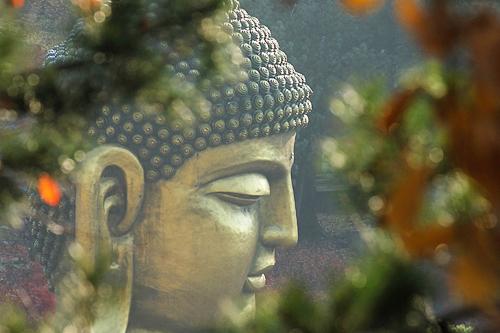 부처님의 동산 와우정사