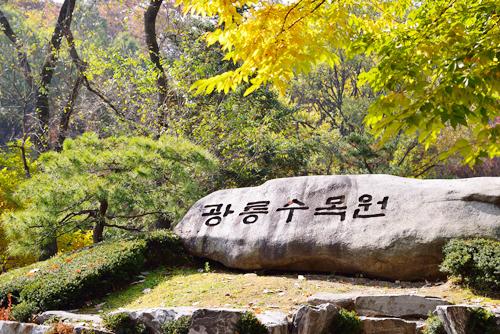 540여 년을 지켜온 숲속의 향기 국립수목원1
