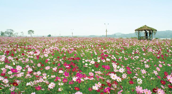 2011년 09월 추천 가볼만한 곳 – 경기도 축제