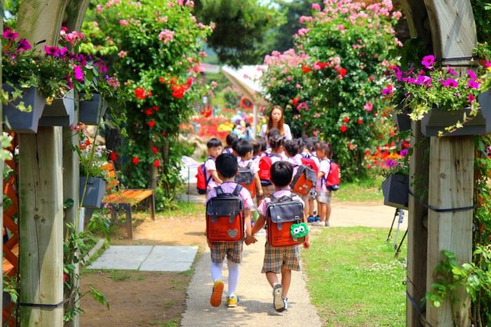 경기끼투어서울 대공원 장미원 162