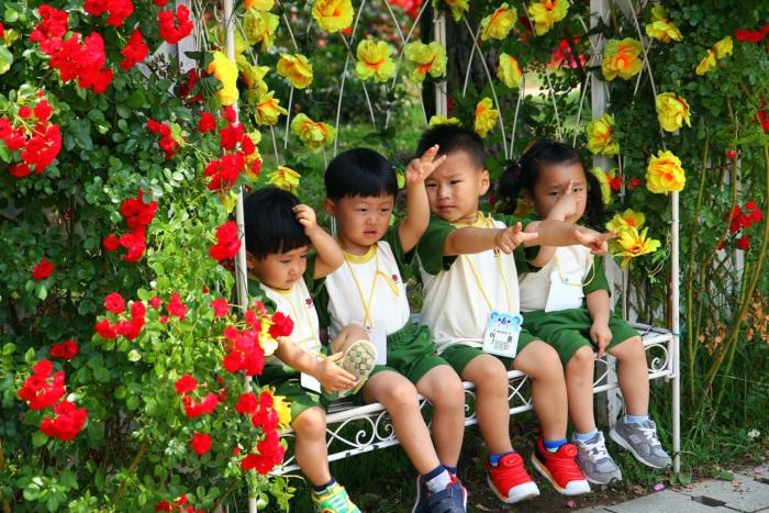 경기끼투어서울 대공원 장미원 237
