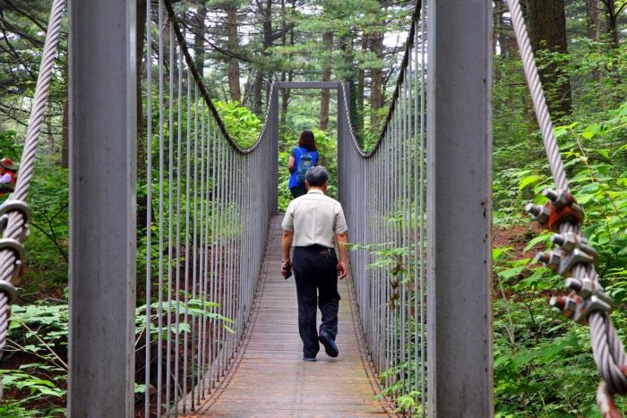 가평 축령산 잣향기 푸른숲
