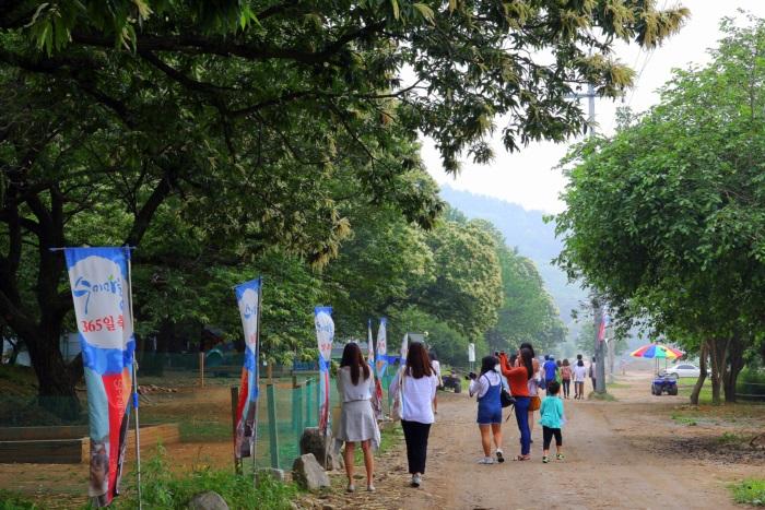 양평 수미마을축제