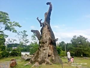 물향기 수목원14