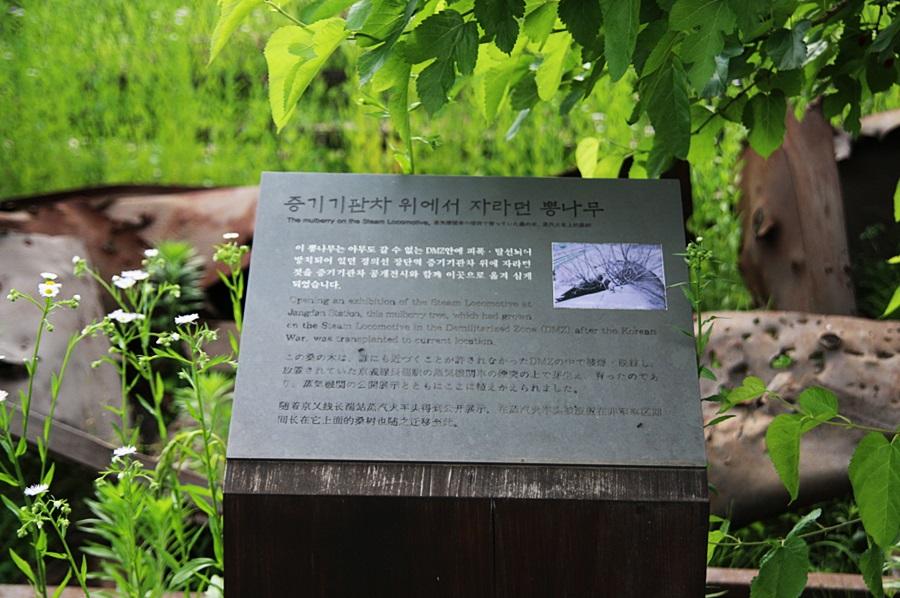경기도 파주 추천여행, 임진각 평화누리