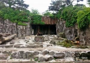 서울대공원14