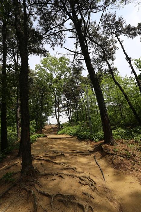 용인상갈근린공원10