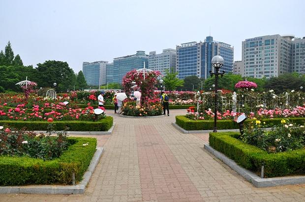 첫번째 정원