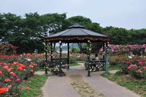 장미 정원 쉼터