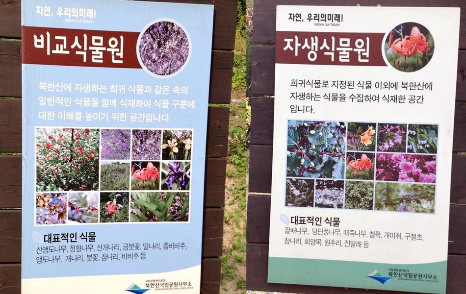 비교식물원|북한산에 자생한 희귀 식물과 같은 속의 일반적인 식물을 함께 식재하여 식물 구분에 대한 이해를 높이기 위한 공간입니다. |대표적인 식물 |산앵도나무, 정향나무, 산개나리, 금붓꽃, 말나리, 좀비비추, 앵도나무, 개나리, 붓꽃, 참나리, 비비추 등 |자생식물원|희귀식물로 지정된 식물 이외에 북한산에 자생하는 식물을 수집하여 식재한 공간입니다. |대표적인 식물 |팥배나무, 당단풍나무, 때죽나무, 철쭉, 개미취, 구절초, 참나리, 회양목, 원추리, 진달래 등