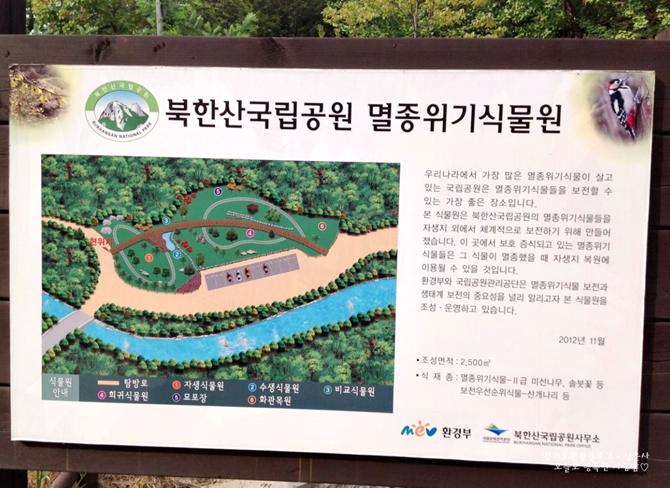 북한산국립공원 멸종위기식물원|우리나라에서 가장 많은 멸종위기식물이 살고 있는 국립공원은 멸종위기식물들을<br /> 보전할 수 있는 가장 좋은 장소입니다. 본 식물원은 북한산국립공원의 멸종위기식물들을 자생지 외에서 체계적으로 보전하기 위해 만들어 졌습니다. 이 곳에서 보호 증식되고 있는 멸종위기 식물들은 그 식물이 멸종했을 때 자생지 복원에 이용될 수 있을 것입니다. 환경부와 국립공원관리공단은 멸종위기식물 보전과 생태계 보전의 중요성을 널리 알리고자 본 식물원을 조성,운영하고 있습니다. 2012년 11월 |조성면적:2,500㎡|식재종:멸종위기식물 2급 미선나무, 솔붓꽃 등  보전우선순위식물-산개나리 등|환경부 북한국립공원사무소