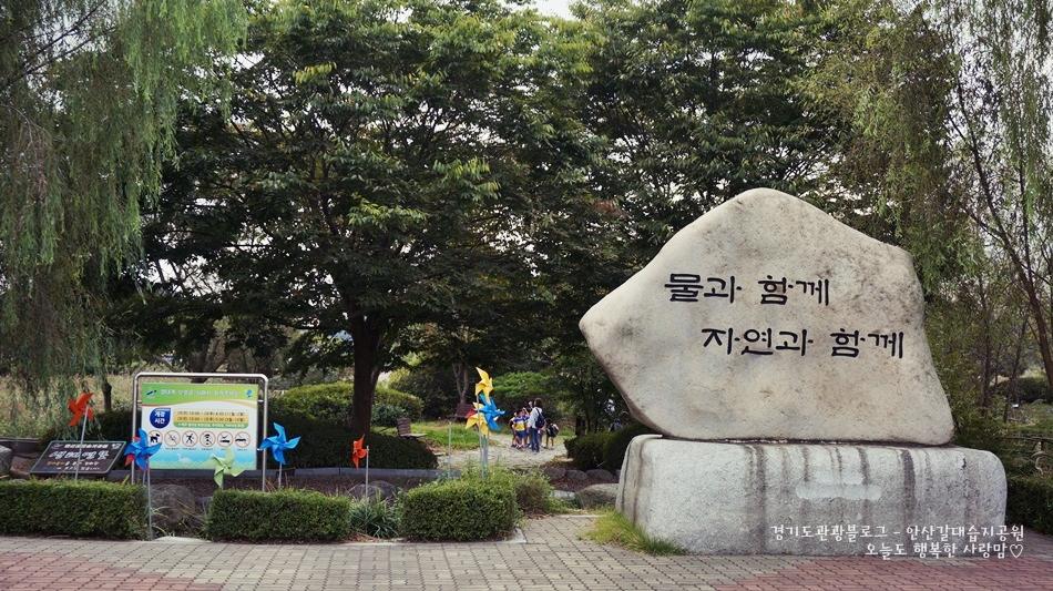 안산갈대습지공원 03