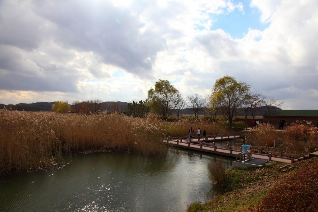 안산 갈대습지공원