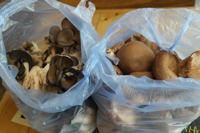 버섯 구입